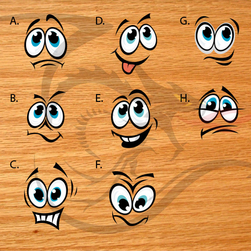 Cartoon Faces - Stock Decals