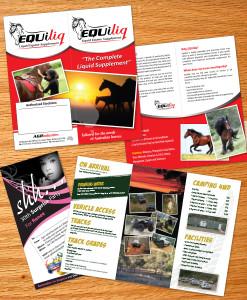 Flyers Brochures